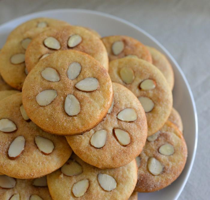 Sand Dollar Sugar Cookies
