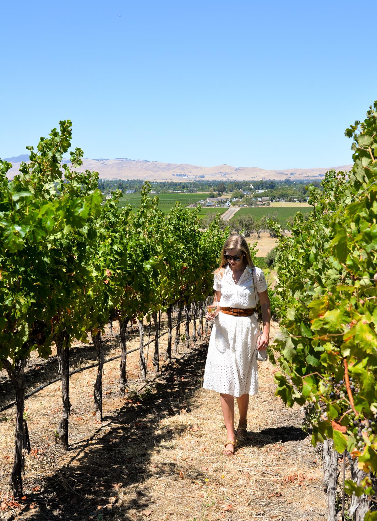 Murrieta's Well Winery