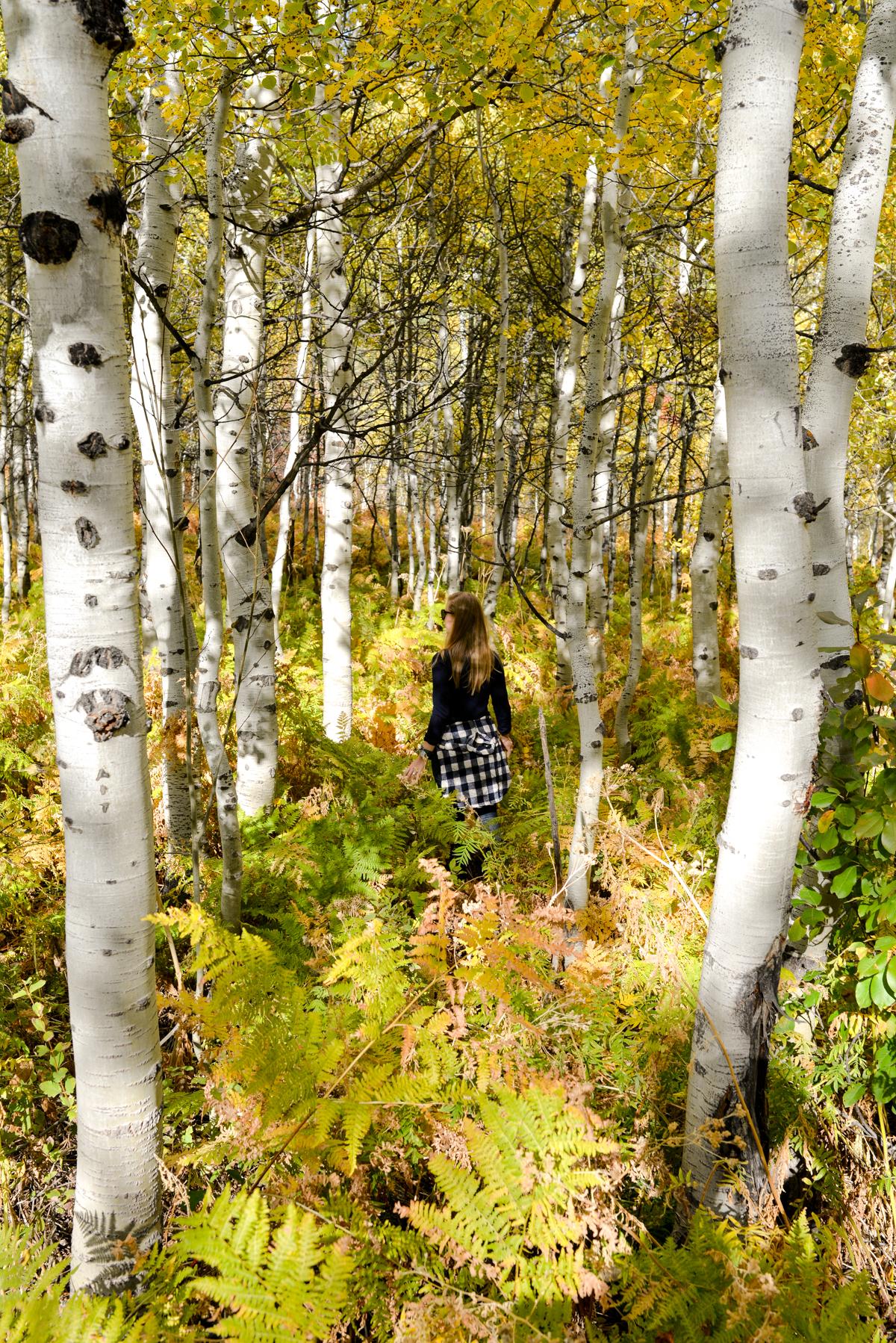 Stacie Flinner Utah in the Fall