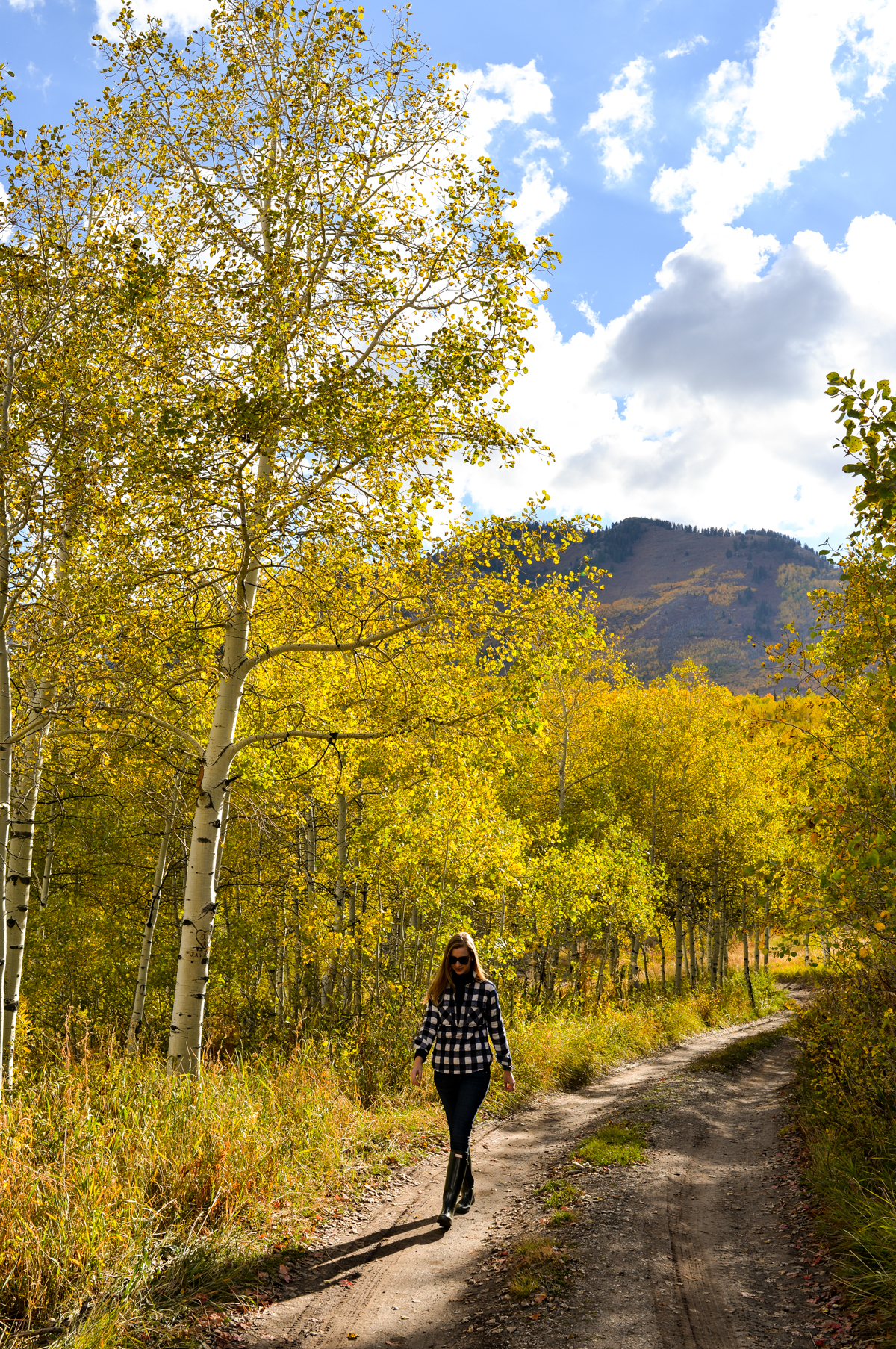 Stacie Flinner Fall Foliage in Utah