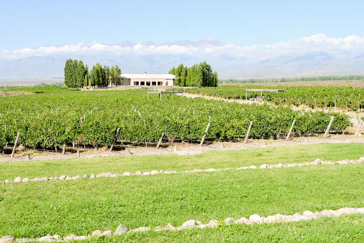 Stacie-Flinner-Best-Mendoza-Winery-25