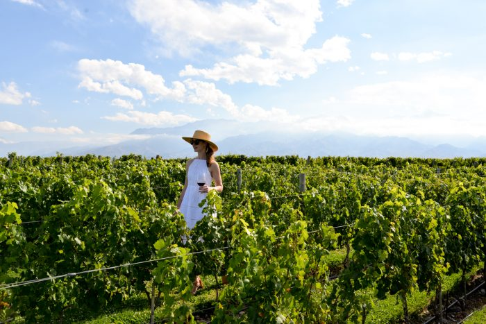 Travel Diary: The Vines of Mendoza