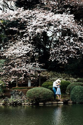 Travel Diary: Sakura in Tokyo