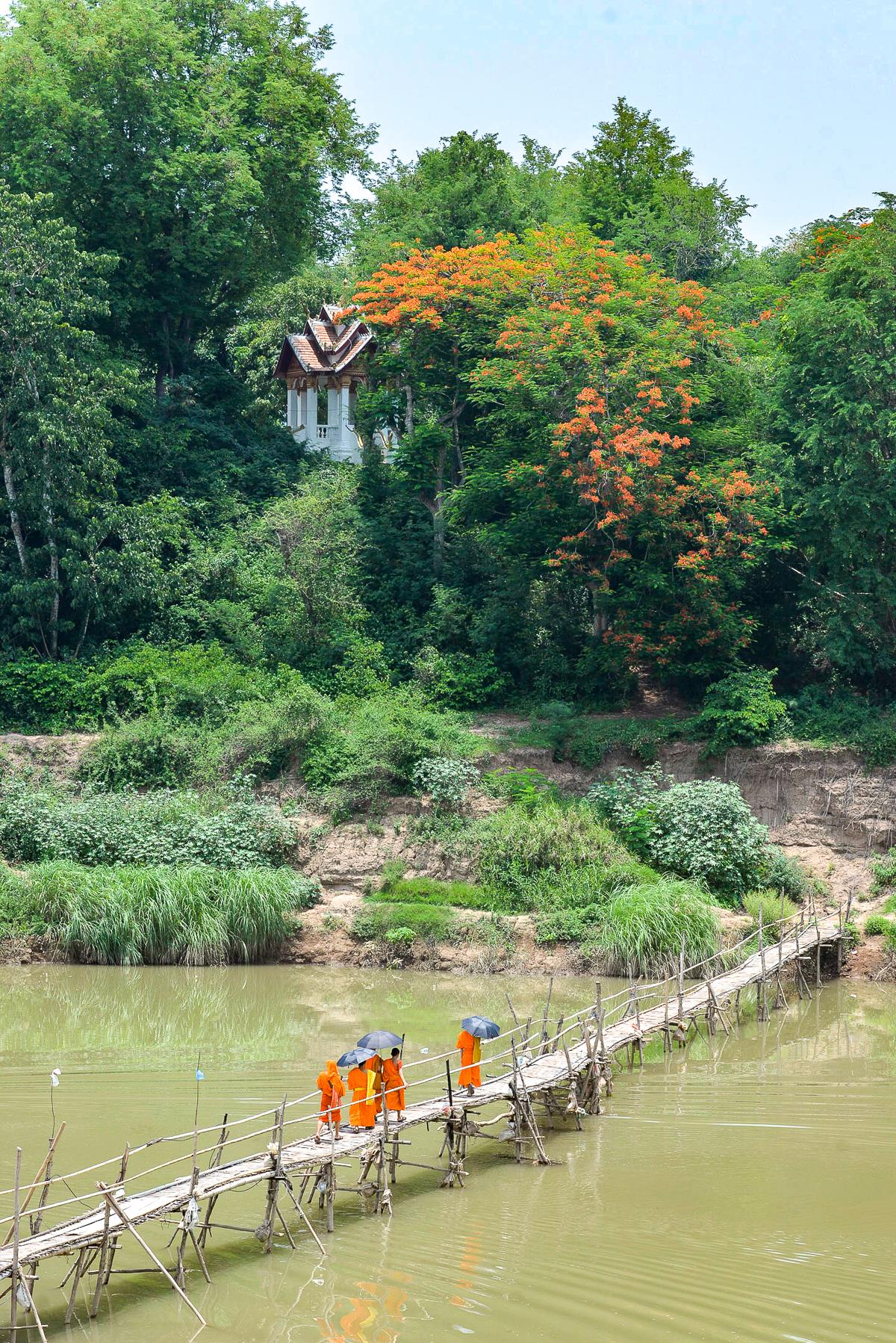 Stacie Flinner 3 Nagas Complete Guide to Luang Prabang-137.jpg