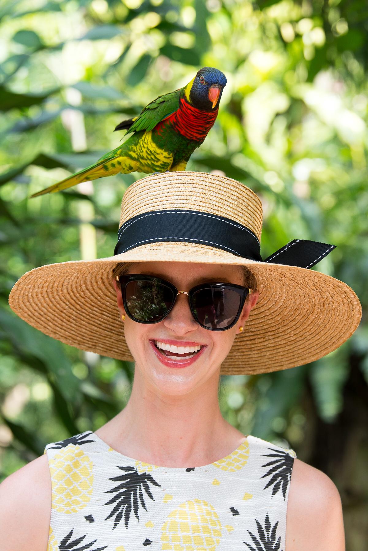 Stacie Flinner Kuala Lumpur Bird Park -26.jpg