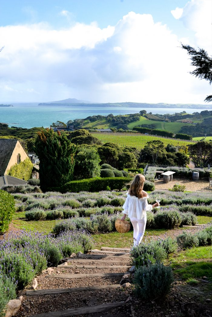 Waiheke Island and The Oyster Inn