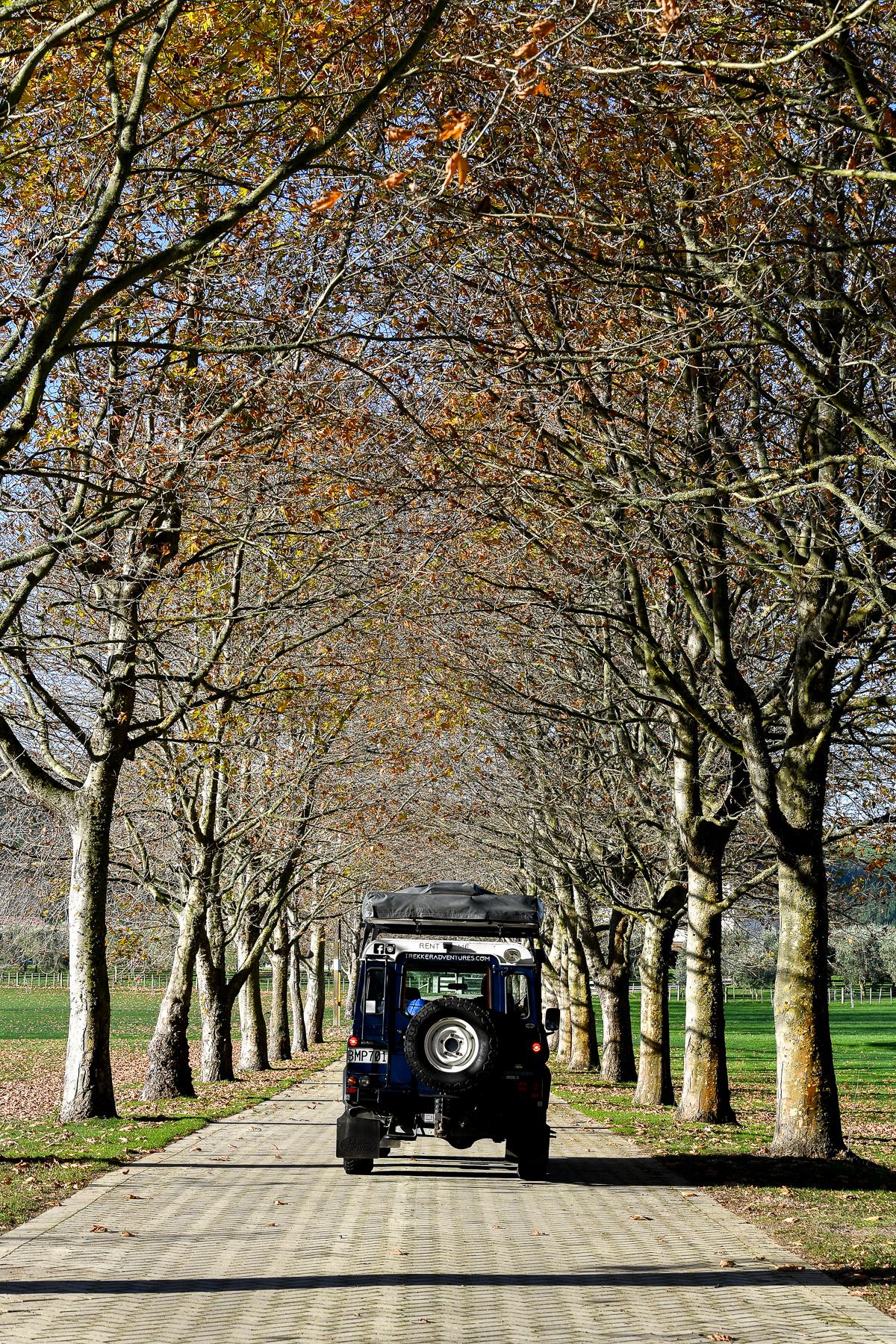 Stacie Flinner Land Rover Camping New Zealand-75.jpg