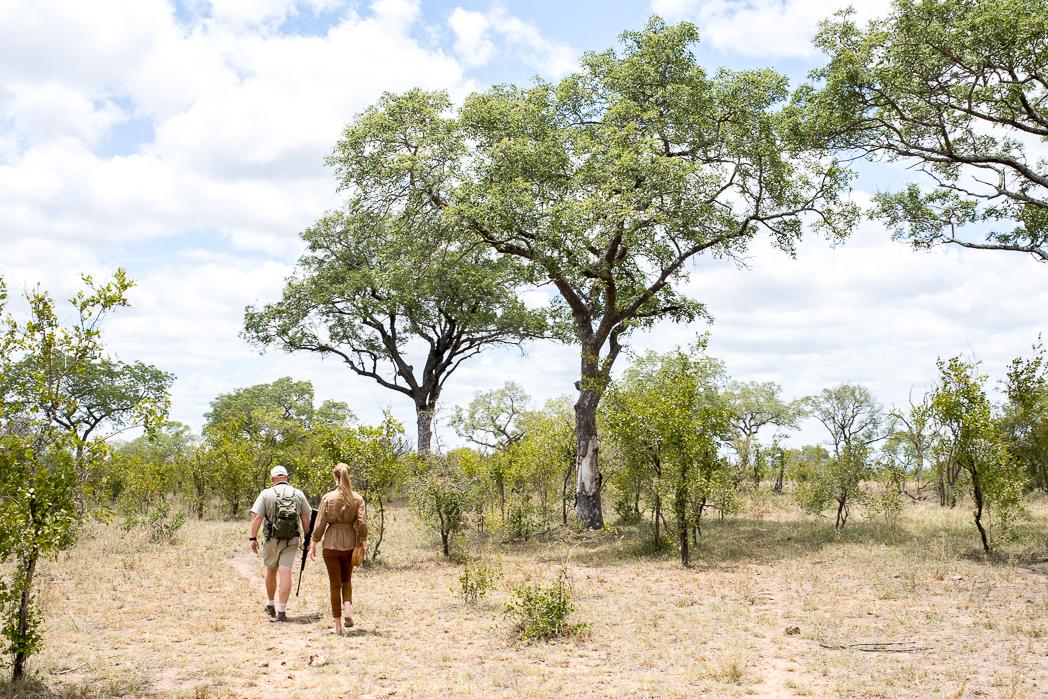 Stacie Flinner Sabi Sabi Selati Camp Kruger-31.jpg