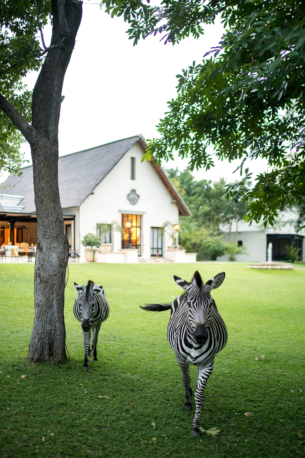 Stacie Flinner x Royal Livingstone Hotel Zambia -9.jpg