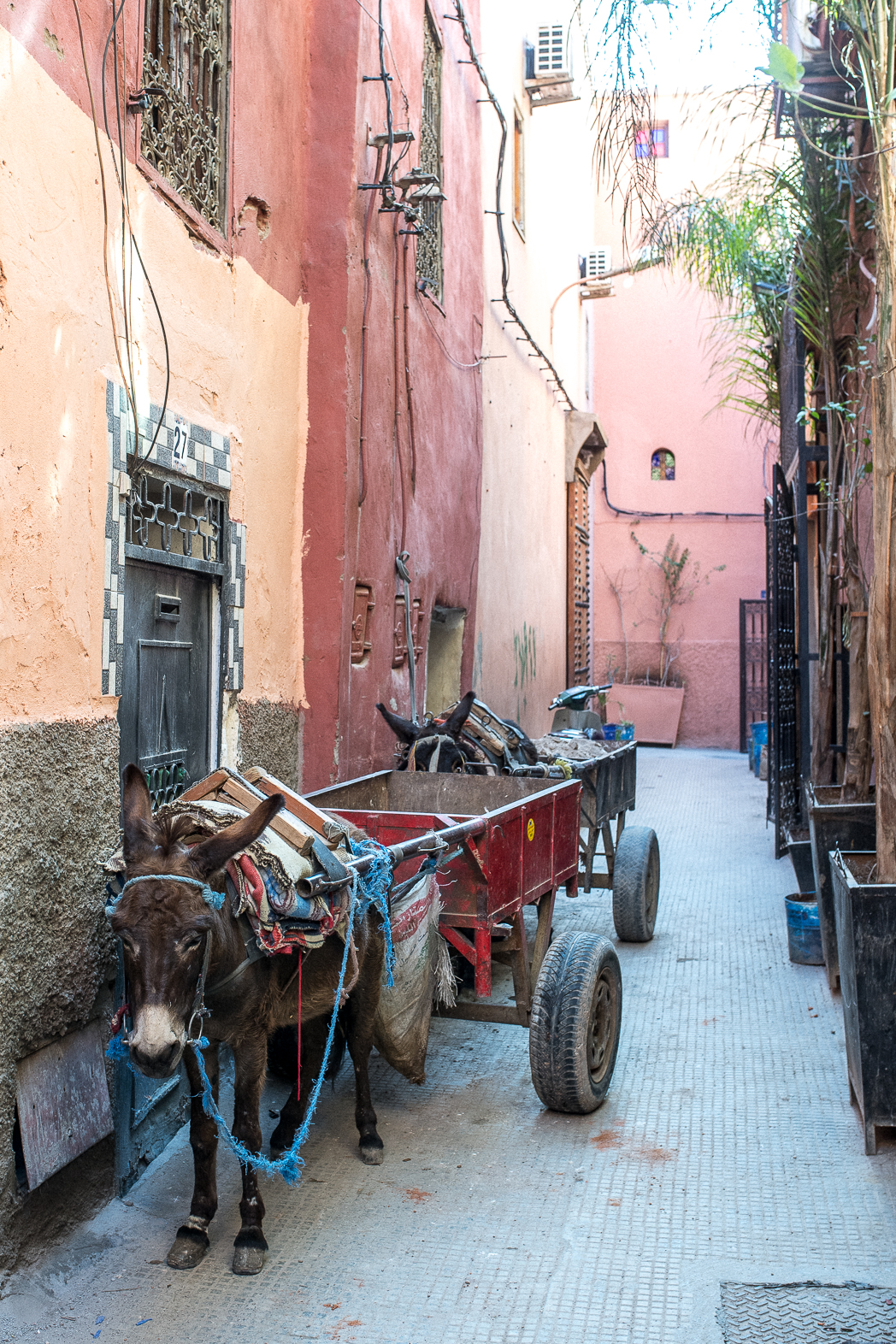 STACIE FLINNER La Sultana Marrakech City Guide-14.jpg