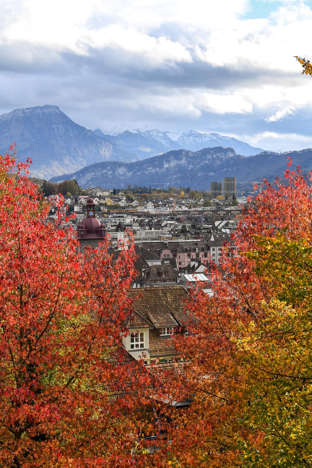 STACIE FLINNER Lucerne Road Trip-4