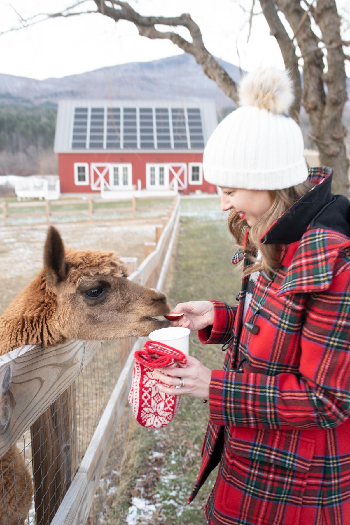 Stacie Flinner Southern Vermont Guide Hill Farm Inn-30.jpg