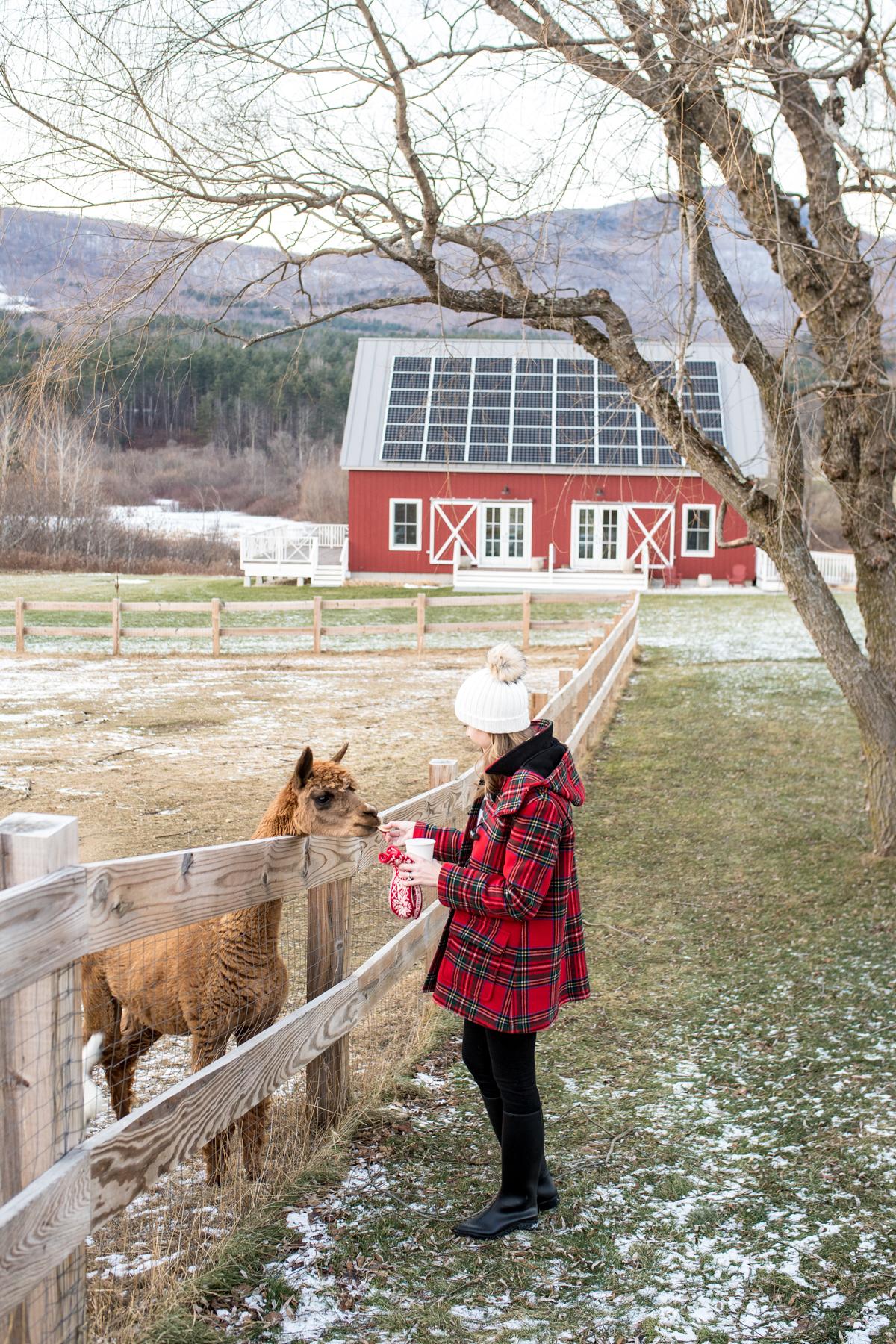 Stacie Flinner Southern Vermont Guide Hill Farm Inn-32.jpg