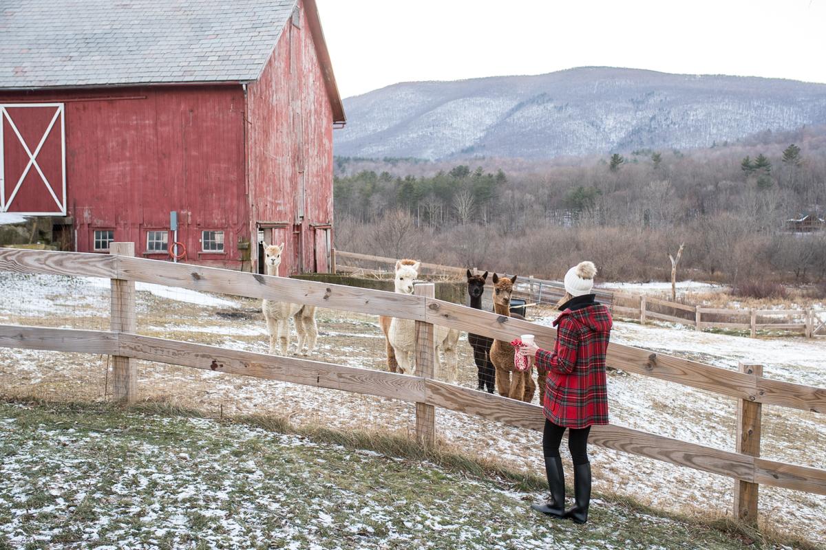 Stacie Flinner Southern Vermont Guide Hill Farm Inn-33.jpg