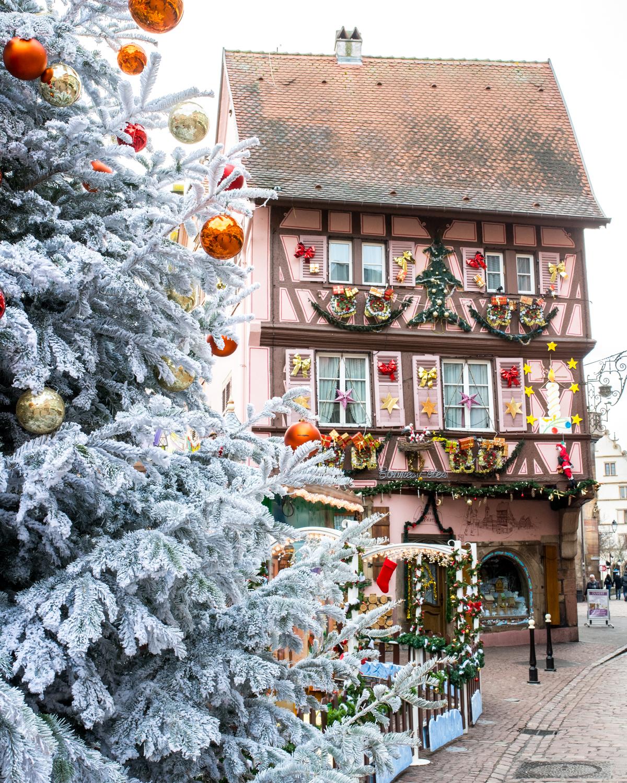 Stacie Flinner x Colmar France at Christmas-1