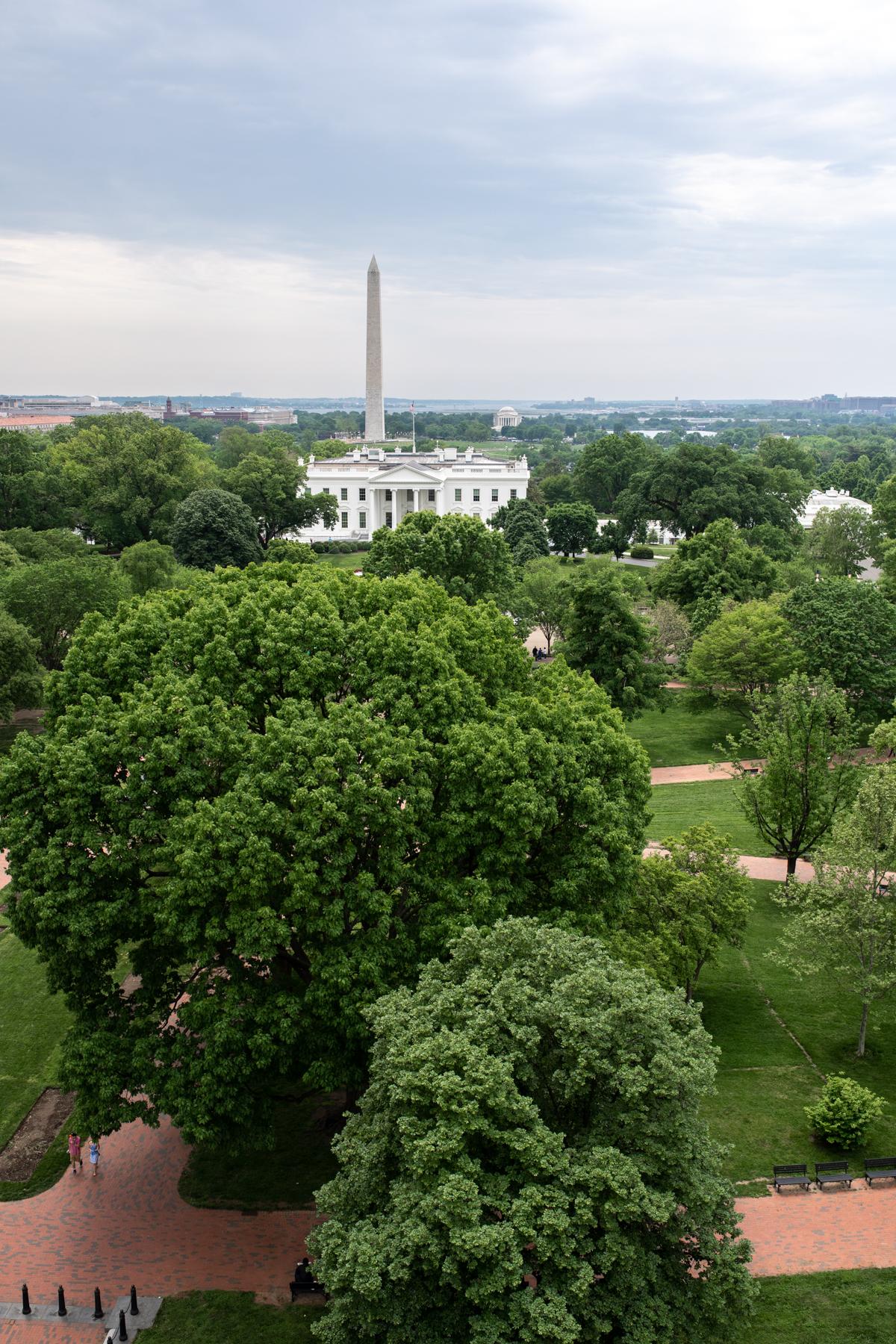 36 Hours in Washington DC THE HAY ADAMS x Stacie Flinner -9.jpg