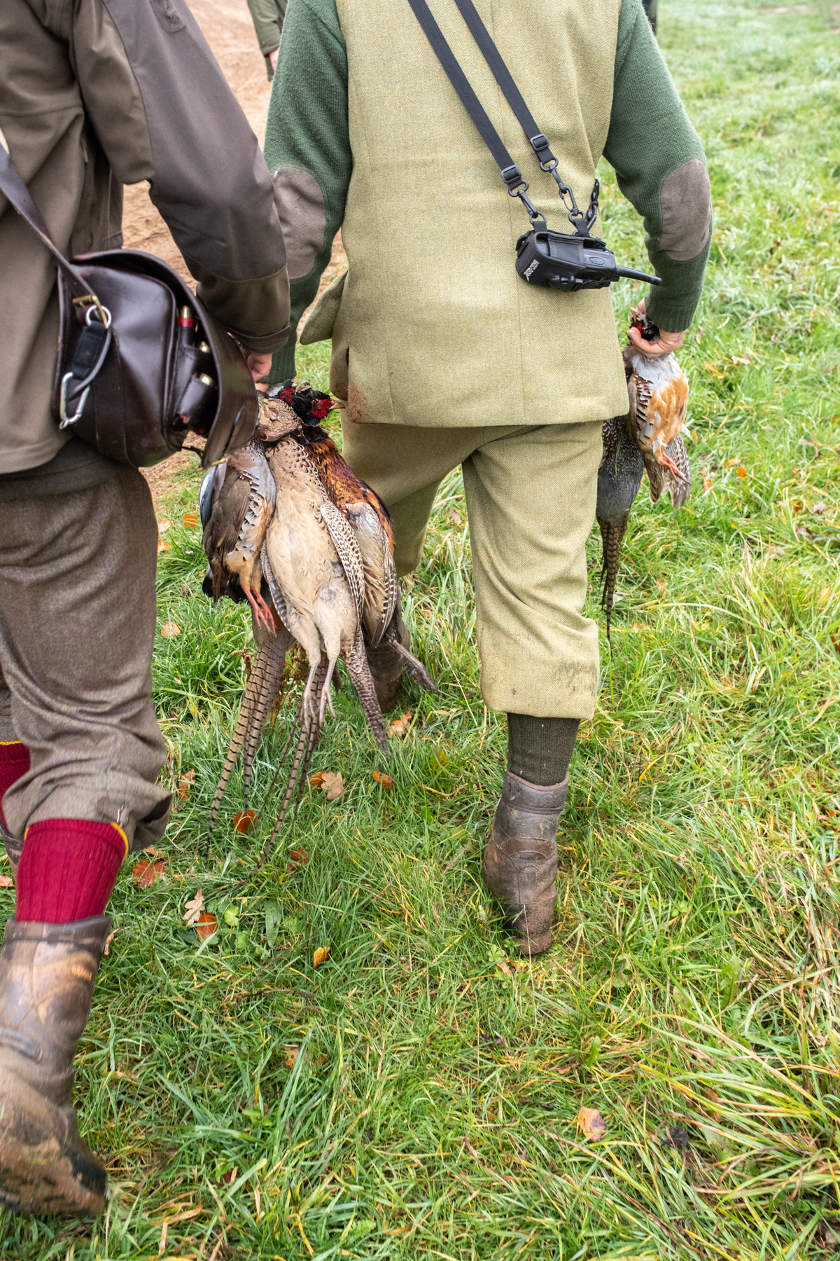 Euston Hall Pheasant Hunt Sporting Weekend-24.jpg
