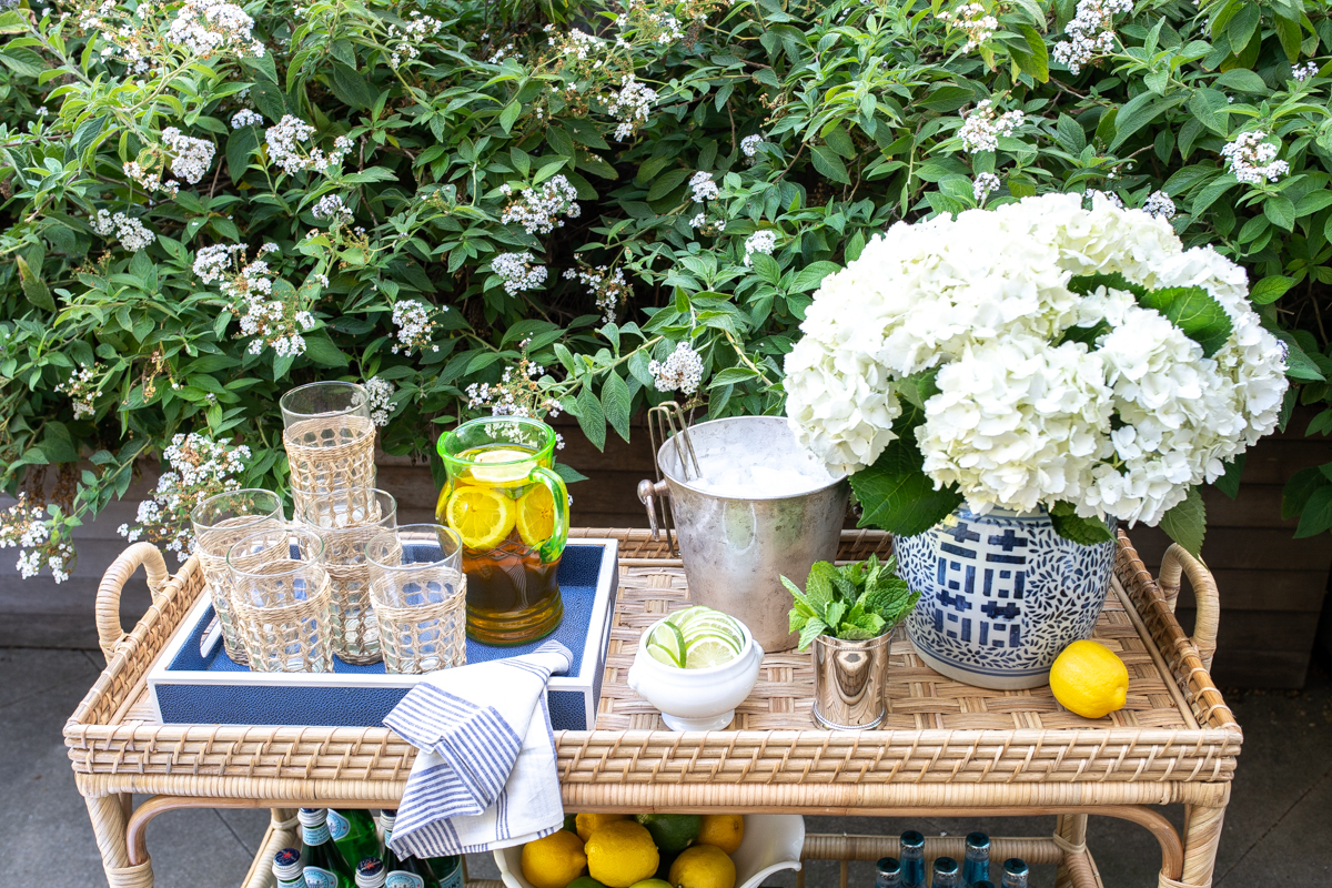 Serena Lily South Seas Bar Cart Styling TIps x Stacie Flinner -1.jpg