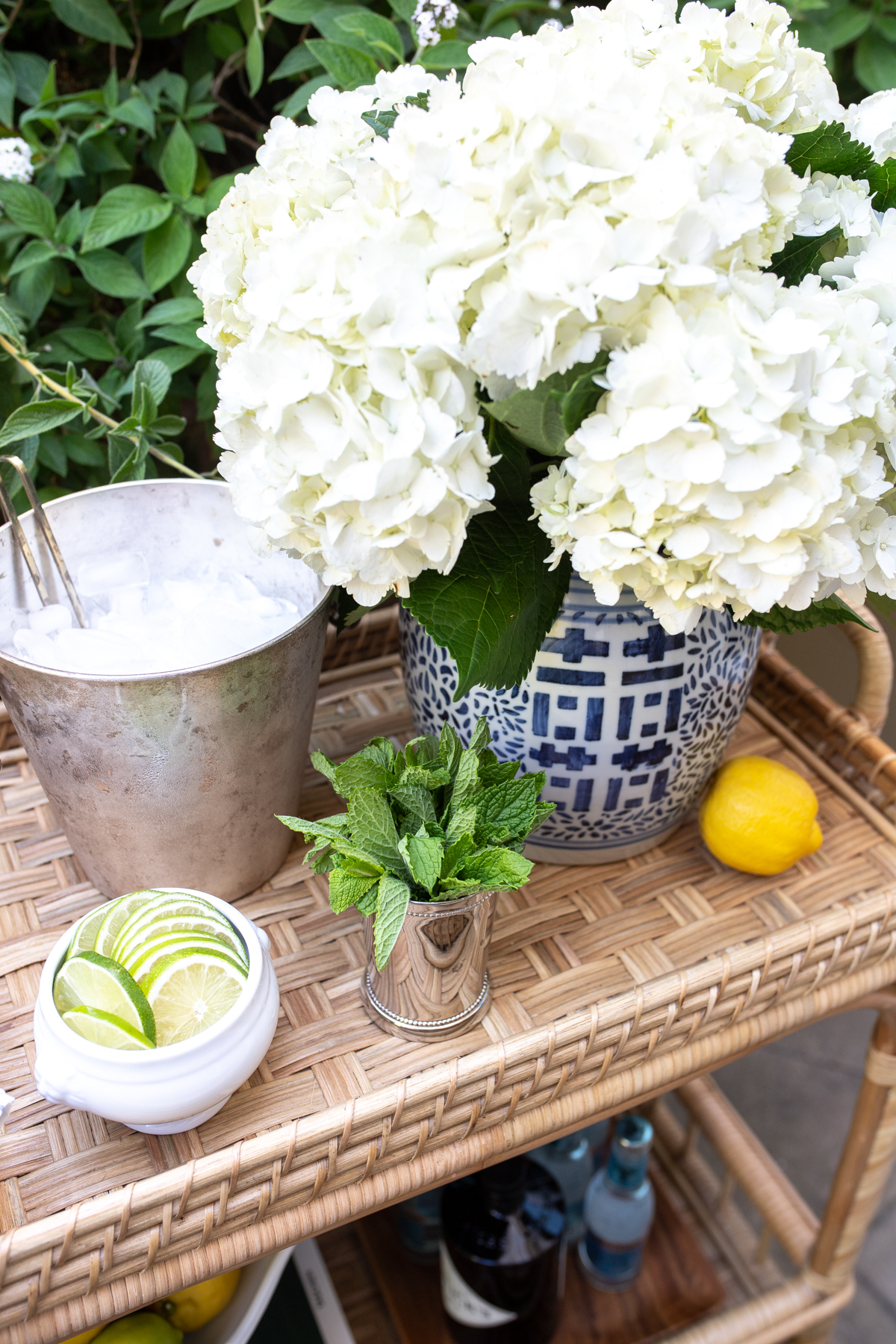 Serena Lily South Seas Bar Cart Styling TIps x Stacie Flinner -13.jpg