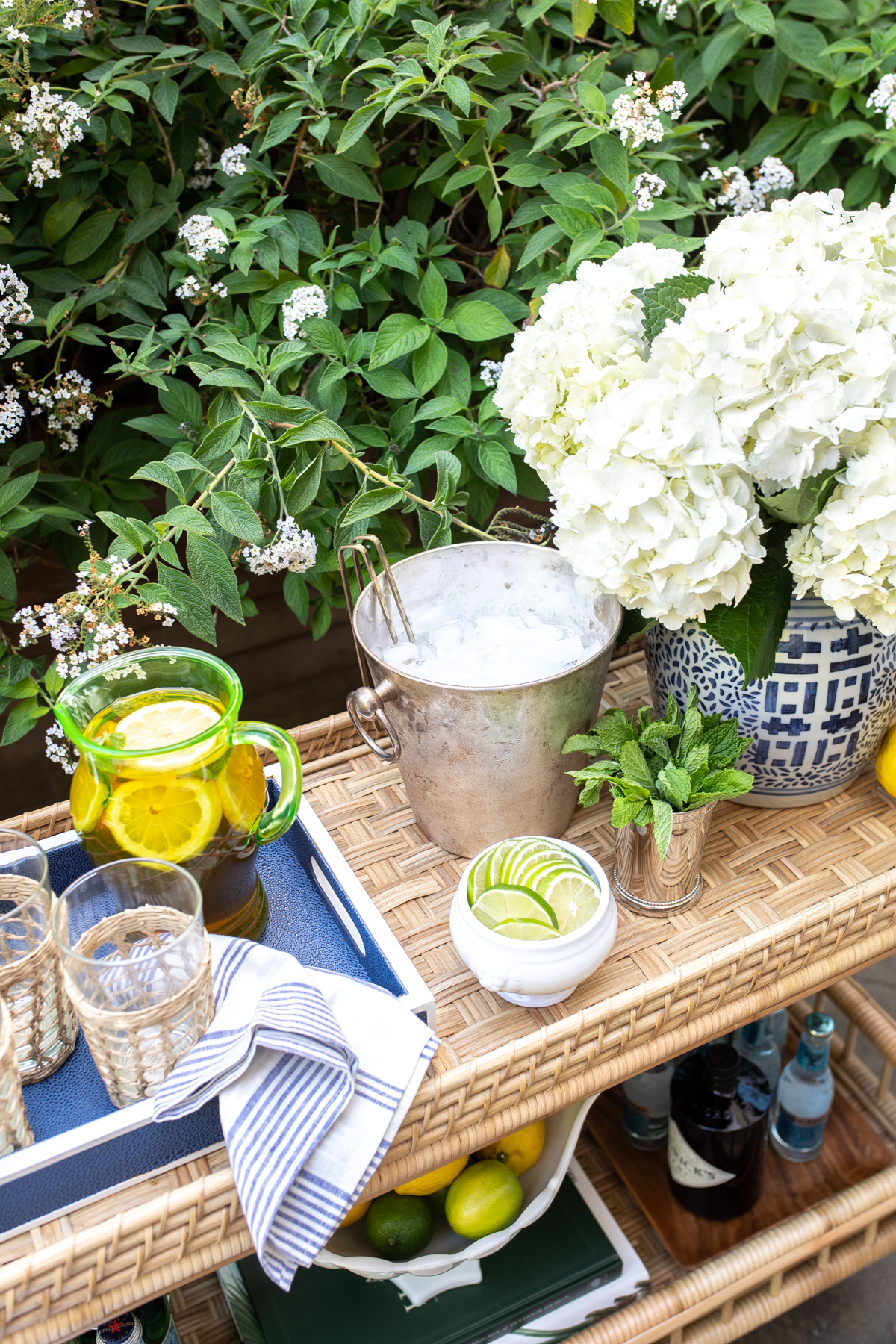 Serena Lily South Seas Bar Cart Styling TIps x Stacie Flinner -19.jpg