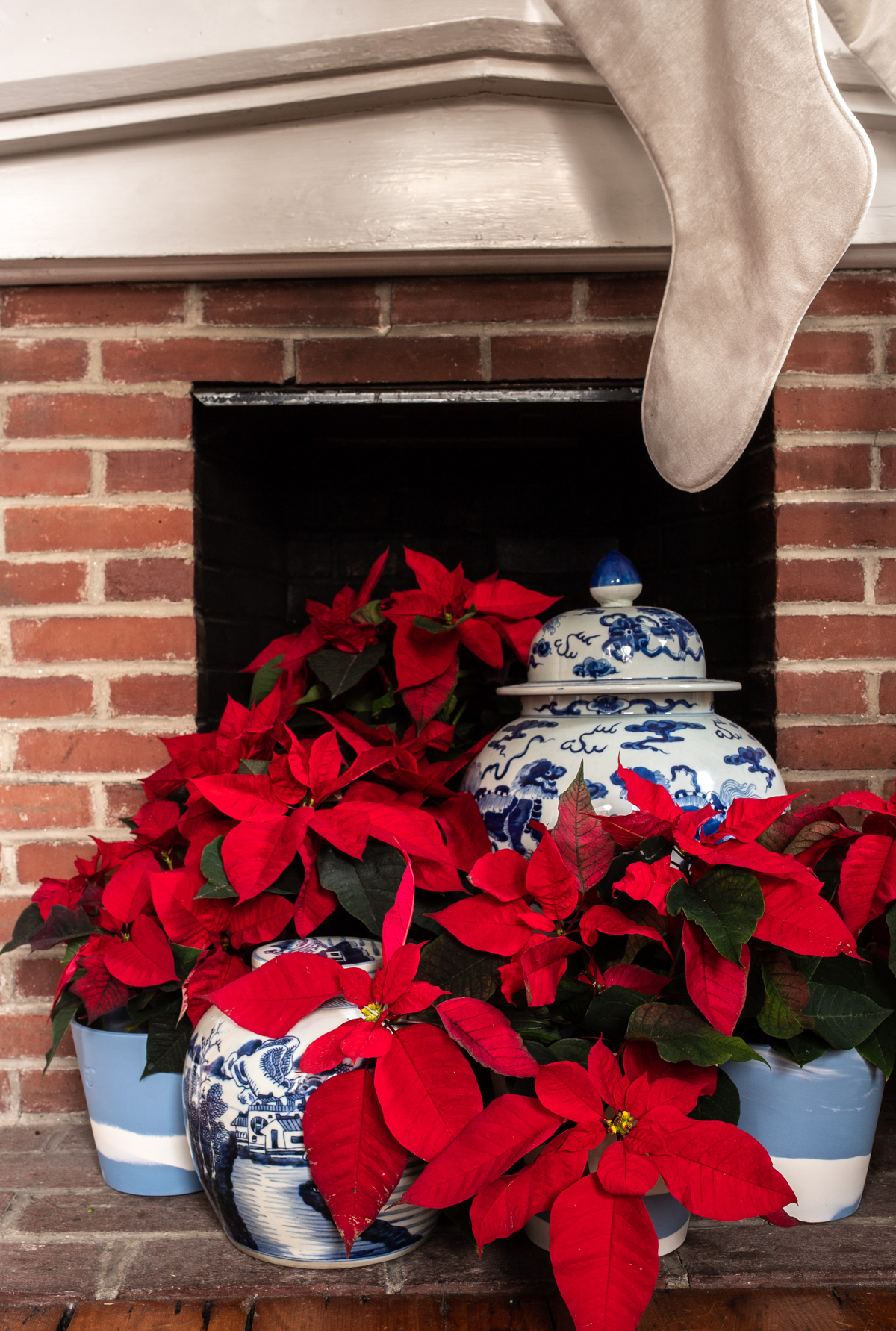 Stacie Flinner x New England Holiday Decorations-15.jpg