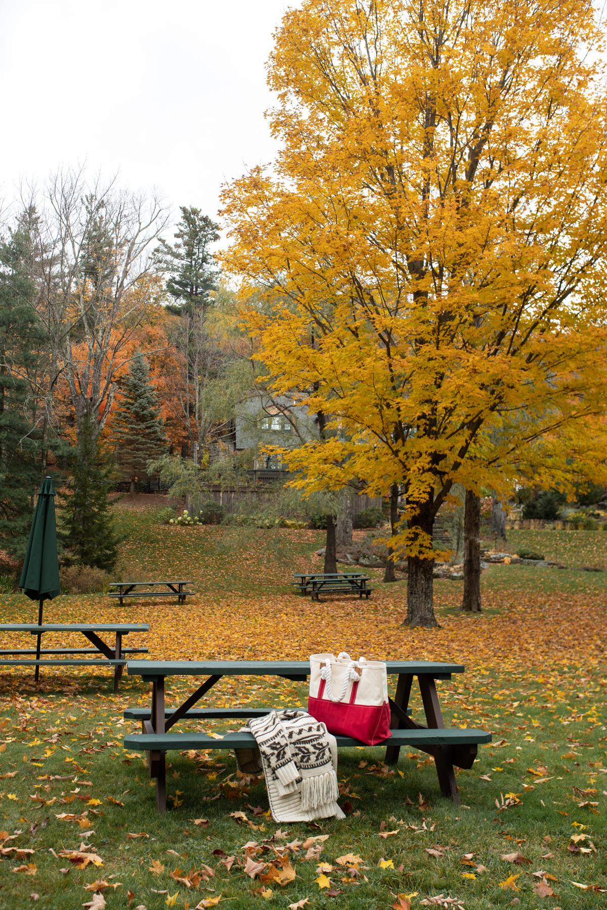 Stacie Flinner x Deer Mountain Inn Catskills NY-36.jpg