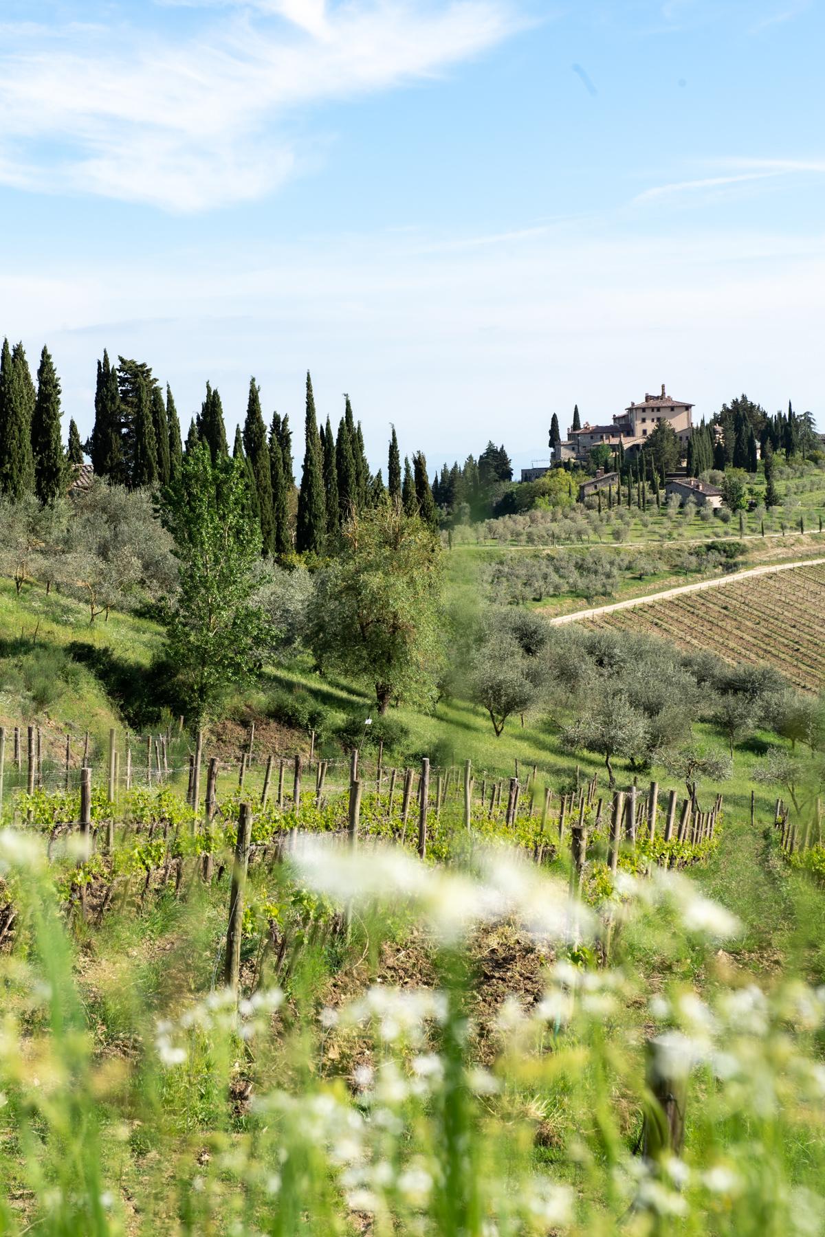 Stacie Flinner x Cuvee Tuscan Farmhouse Tuscany Italy Guide-117.jpg
