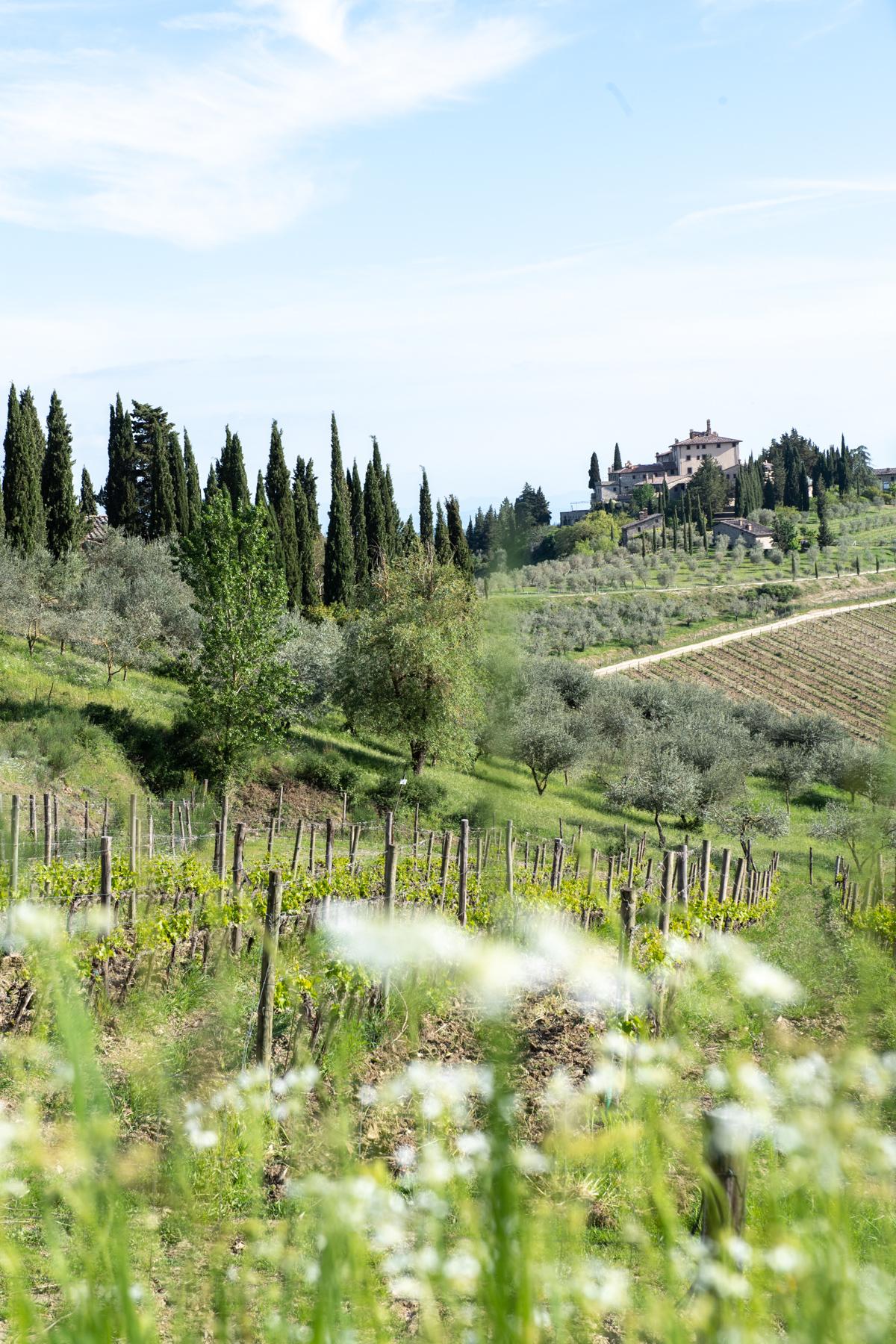 Stacie Flinner x Cuvee Tuscan Farmhouse Tuscany Italy Guide-82.jpg