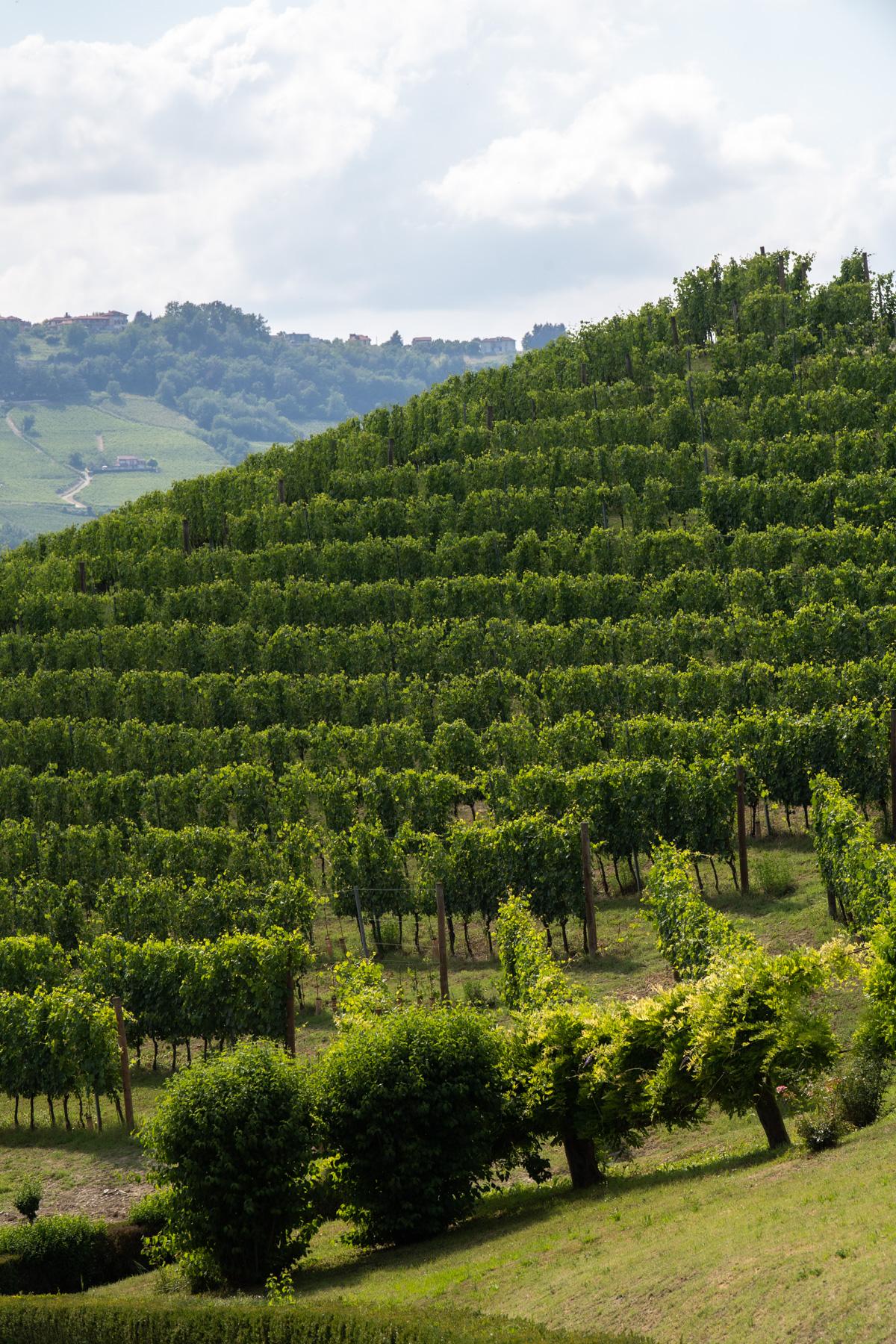 Stacie Flinner x Marta Scarampi Torino Italy Trip -78.jpg